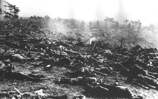ガダルカナル島における日本軍第二師団